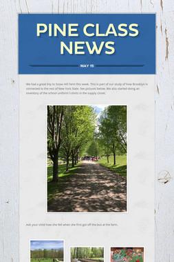 Pine Class News