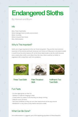 Endangered Sloths