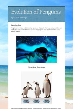 Evolution of Penguins