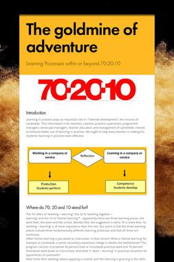 The goldmine of adventure