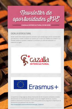 Newsletter de oportunidades SVE