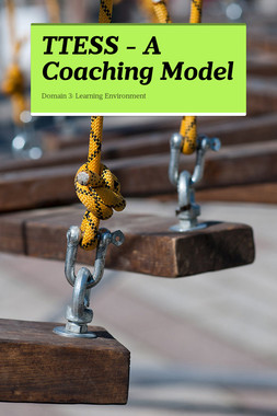 TTESS -  A Coaching Model