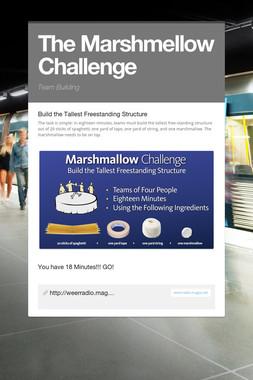 The Marshmellow Challenge