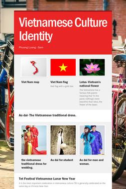Vietnamese Culture Identity