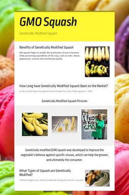 GMO Squash
