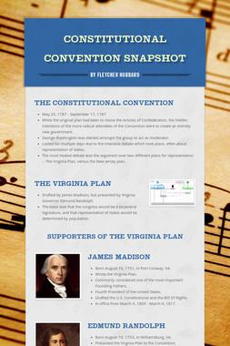 Constitutional Convention Snapshot