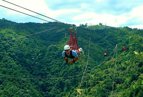 Canopy Adventure Zipline