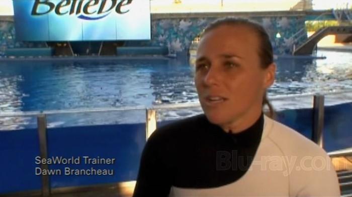 Trainer Interview
