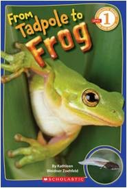 From Tadpole to Frog (Scholastic Reader Level 1)
