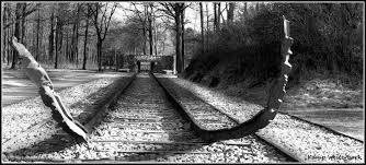 Westerbork summary