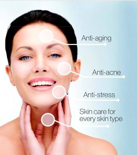 Christmas Facial.Merry Christmas Happy New Year Smore Newsletters