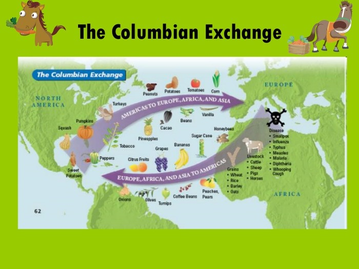 What is the columbian exchange?
