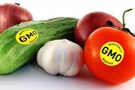 Genetically Modified Organismics..... Huh?