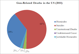 Guns cause too many deaths in America.