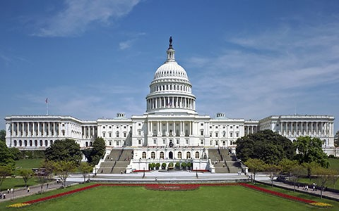 What is the function of the Legislative Branch?