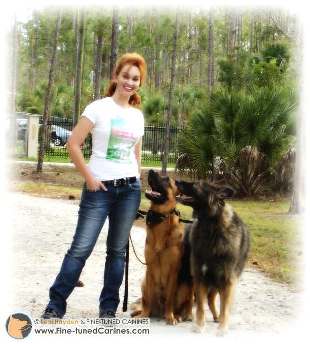 Dog training for the real-world, dog psychology/behavior - Naples Florida - Fort Myers Florida and areas