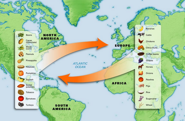 What is The Columbian Exchange ?