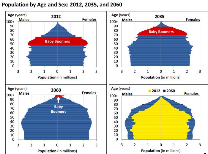 -Demography-