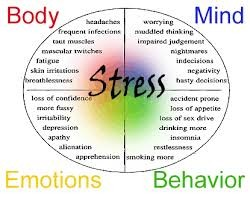 S is for STRESS MANAGERS