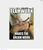 Teamwork makes the dream work..
