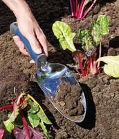 Garden Transplanter - £23.00