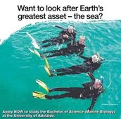 Help predict our ocean's future