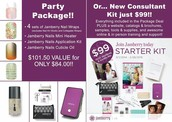 Party Package vs. becoming a consultant