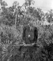 Seminole Living in the Everglades