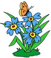 كذلك هناك علاقات متبادله بين الحيوانات و النباتات التي تساعد النباتات في الاستمرار