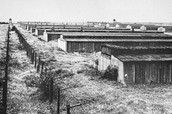 Jews slept and lived in bunkers at concentration camps