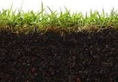 What is soil testing