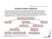 Sample Graphic Organizer
