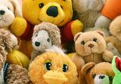 Coleccionar Animales De Peluche