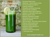 Chlorophyll is Good for you!