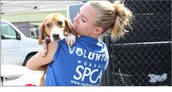 Trabajarán de voluntario a la SPCA