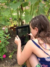 Register Now for Camp TechTerra Summer Sessions -- They're Filling Up Fast!!