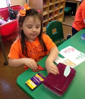 Making our shape Christmas trees