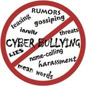 Rule #5 Cyber bullying