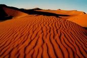 woestijnklimaat