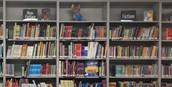Library Genre Focus