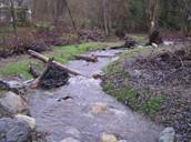 Flowner River