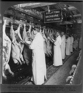 32. meat inspection act