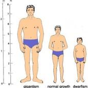 GH Deficiencies Chart