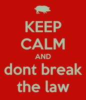 don't break our laws