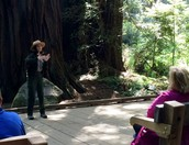 Muir Woods Rangers are excited to announce this development opportunity for volunteers, interns, and partners.