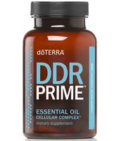 DDR Prime - Cellular Complex