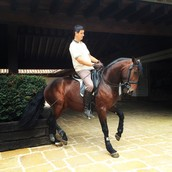 My horse a wonderful gift from Pablo Hermoso
