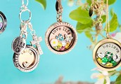 Margie Brown is having an Origani Owl Catalog party!