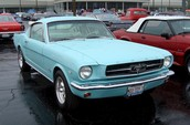A Tropical Turquoise Mustang