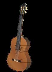 מבנה הגיטרה: